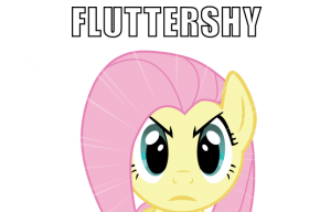 rsz_1fluttershy_does_not_approve_by_computersherpa-d41rn3a